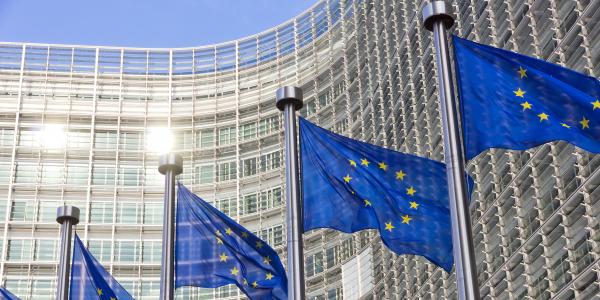 Plan de relance de la Commission européenne : 750 milliards d'euros pour quoi faire ?