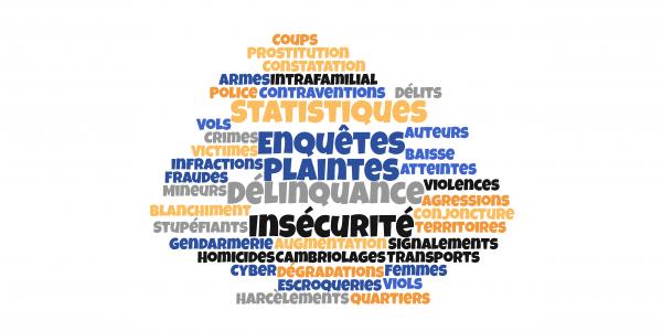 Délinquance, insécurité : quelle est la réalité des chiffres ?