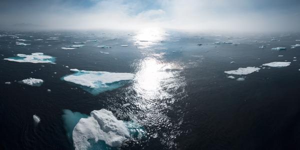 Comment lutter contre le changement climatique ?